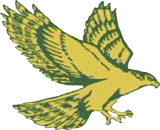 graphic of hawk with wings and talons extended