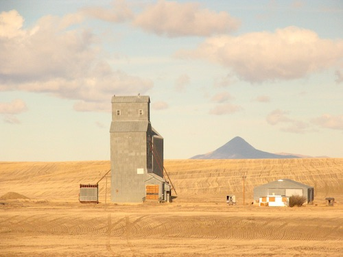 An old grain elevator, fields of golden dry grass or grain, and a distant mountain